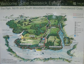 Trelissick Garden and Woodland walks