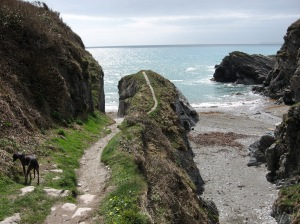 2014.04.09 Lansallos Cove (c) Merryn Robinson