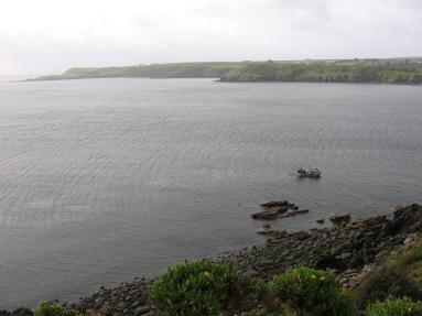 2014.05.09  (30) Helford estuary