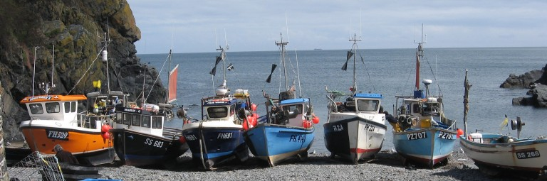 2014.05.23  (68) Cadgwith