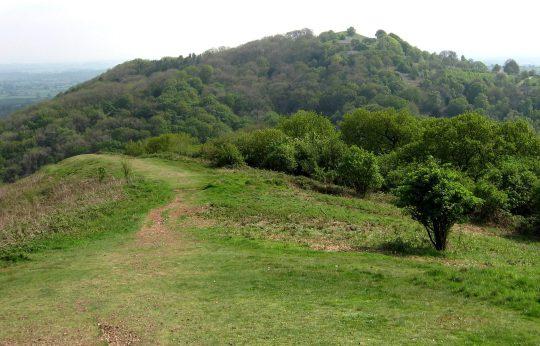 Midsummer Hill from Swinyard Hill